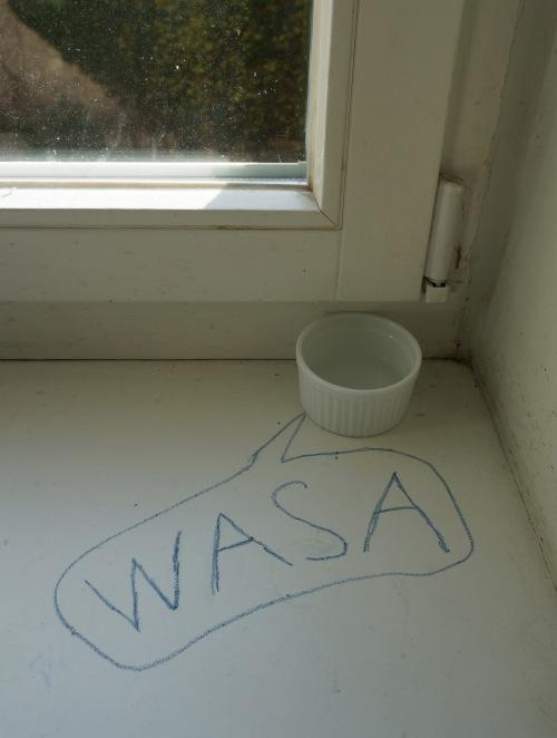 Wasa2_cut